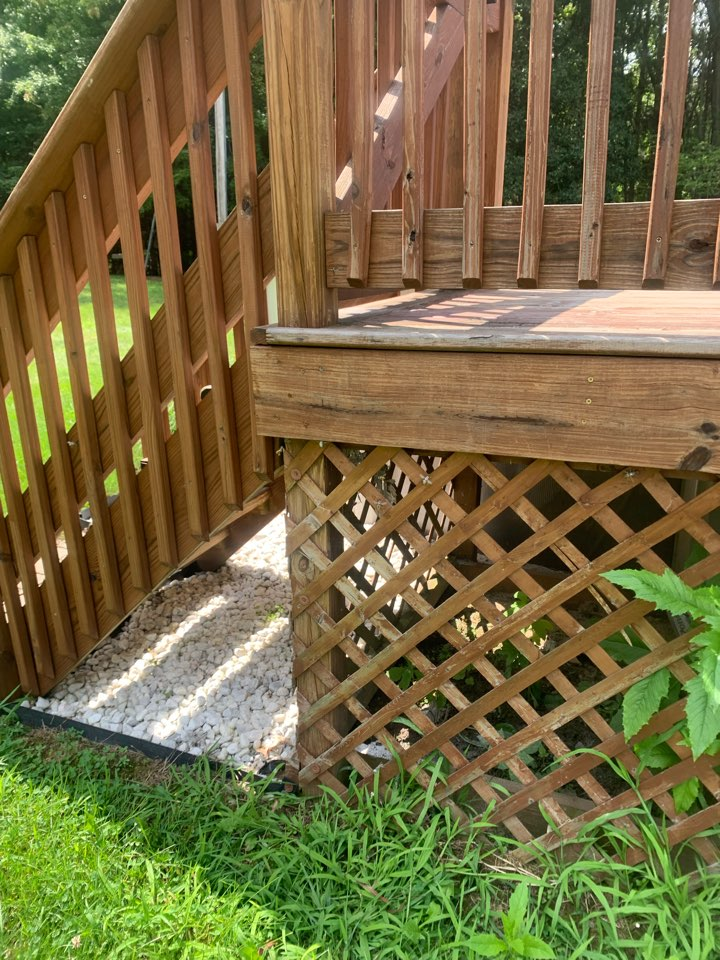 Ionia, MI - Our pest control services just removed a yellow jacket nest from underneath the deck by a pool.