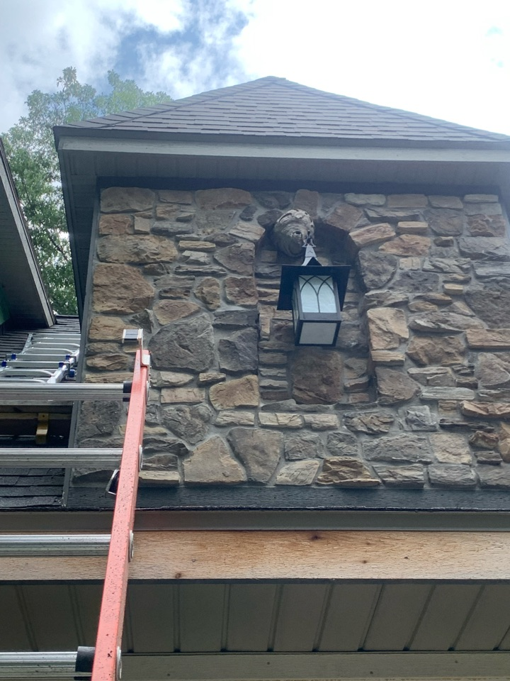Grand Rapids, MI - Removed a large wasp nest on a house this afternoon.