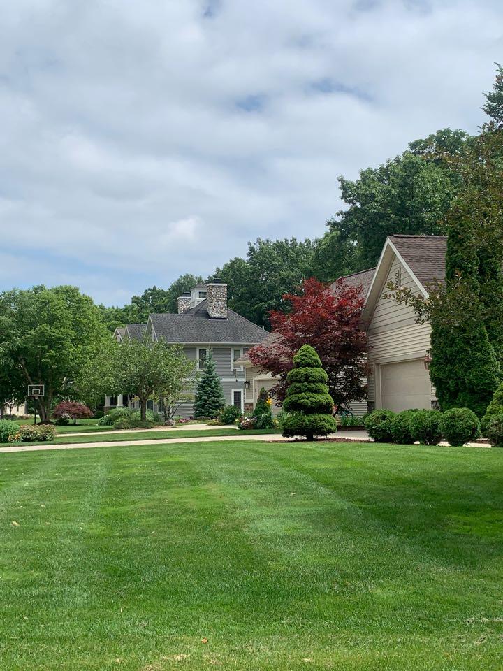 Grand Rapids, MI - Providing effective and safe pest control today.