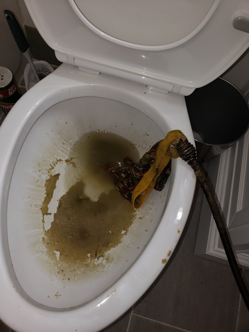 Roswell, GA - Toilet auger in Marietta for good price