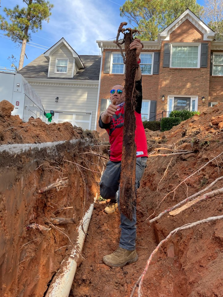 Marietta, GA - Just finished removing major root clog like the picture shows for Mr. Taub Replaced completely mainline to city tap