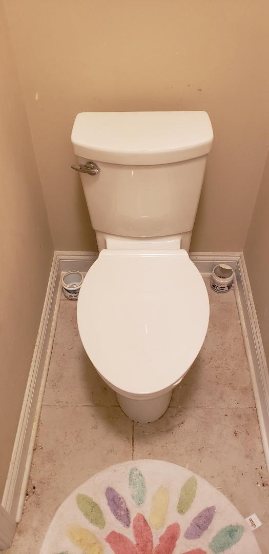 Charleston, SC - Installed c/f toilet