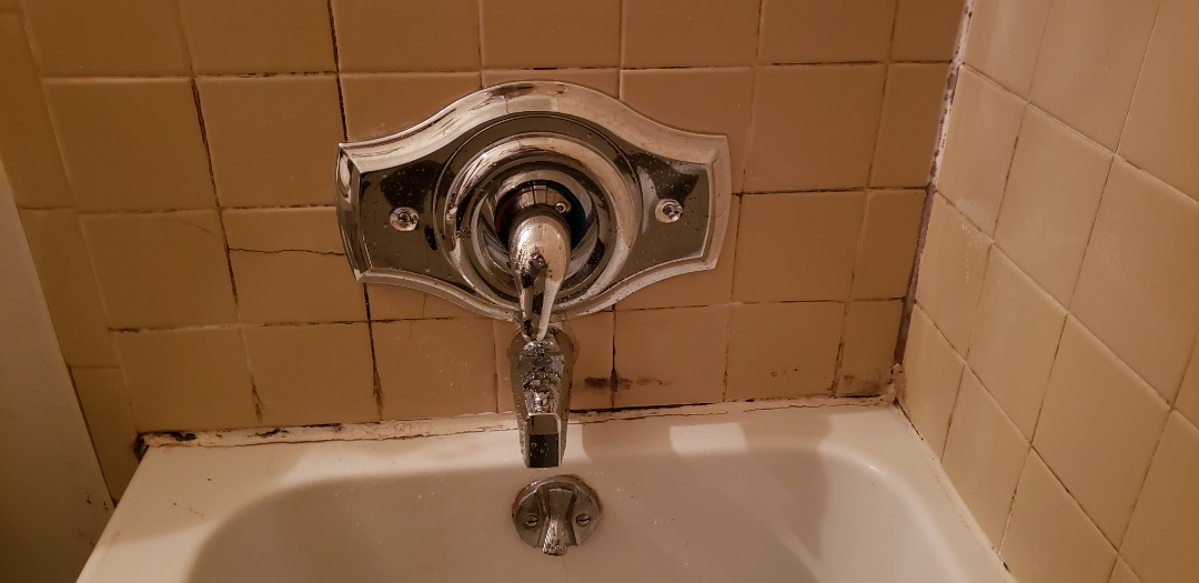 Ladson, SC - Installed moen one handle shower valve and remodel plate