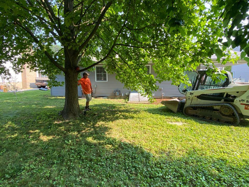Frederick, MD - Regrading rear yard