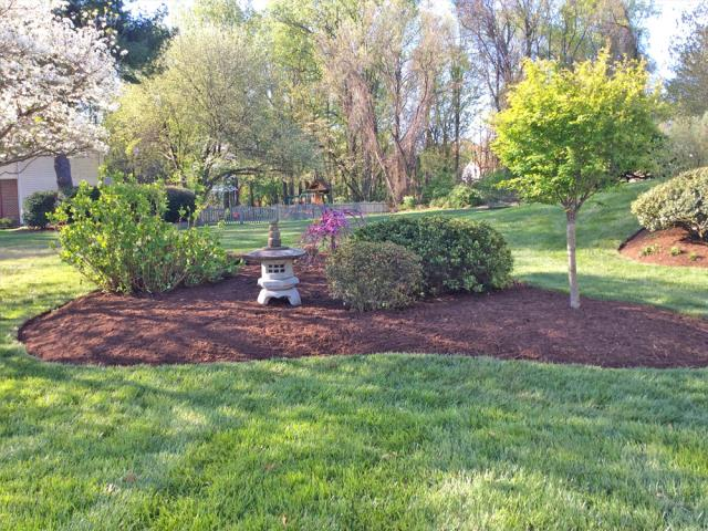 Wonderful garden in the backyard we mulched, pruned, and edged.