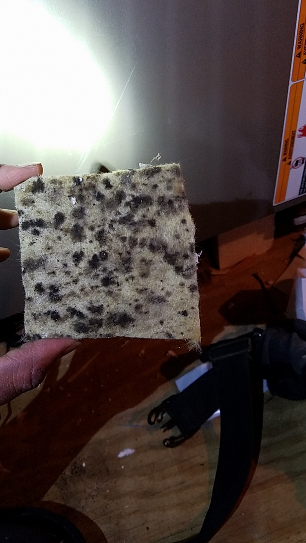 Austin, TX - Indoor air quality with filters unknown microbial growth or mold in ac systems need duct cleaning and iaq cleaning