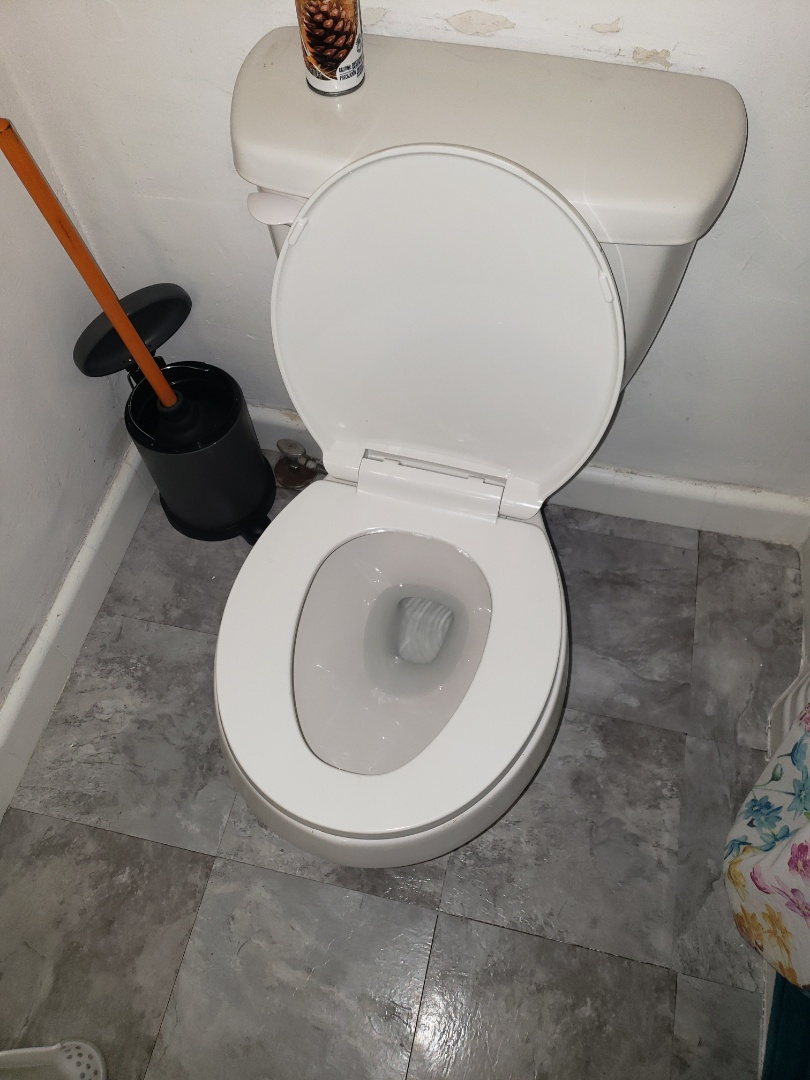 Clear toilet obstruction.