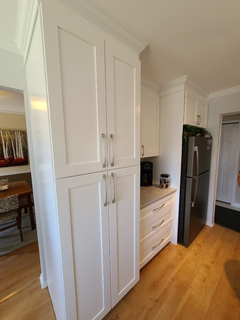 Palatine, IL - Finished palatine kitchen remodel with built in pantry and fridge.