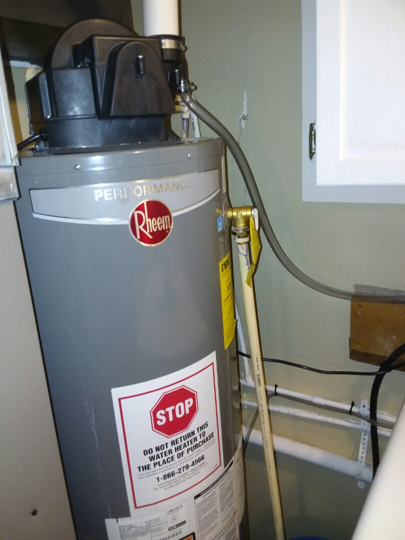 Diagnosing a water  leak issue on a Rheem power vented high efficiency water  heater in Cottage Hills, ill.