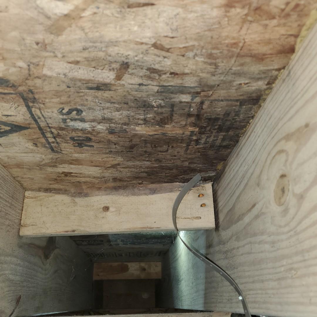 Guntersville, AL - Mold Clean Up Services