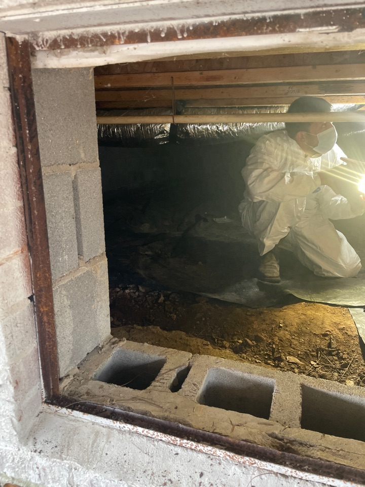 Guntersville, AL - Crawl space inspection