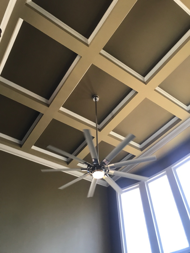 Cumming, GA - Tech installed a 2 story ceiling fan in living room and a 2 story chandelier in the foyer tech installed a whole house surge protector