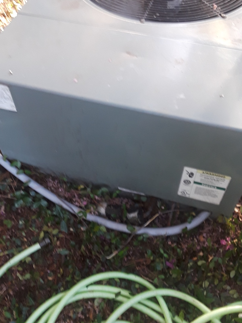 Colleyville, TX - Dirty Ruud Condenser.
