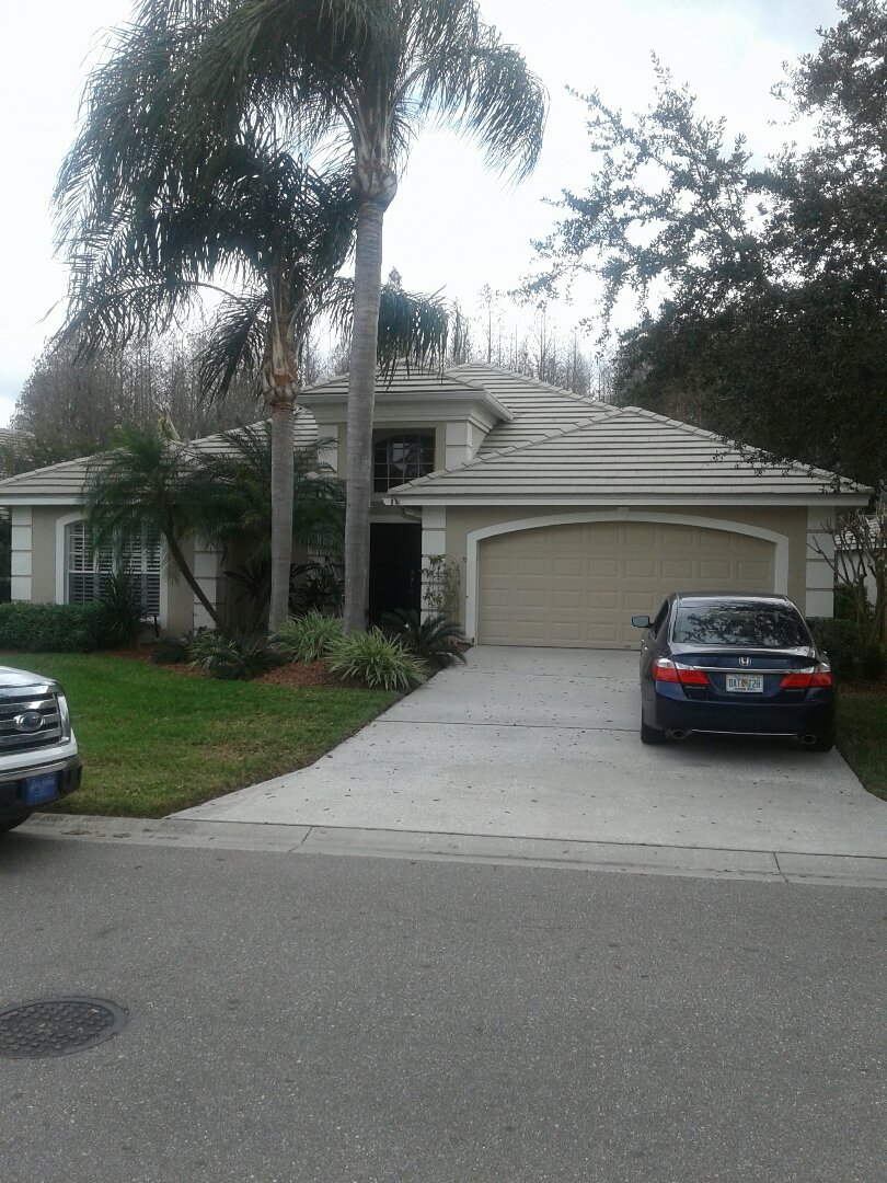 Lutz, FL - Tile roof repair