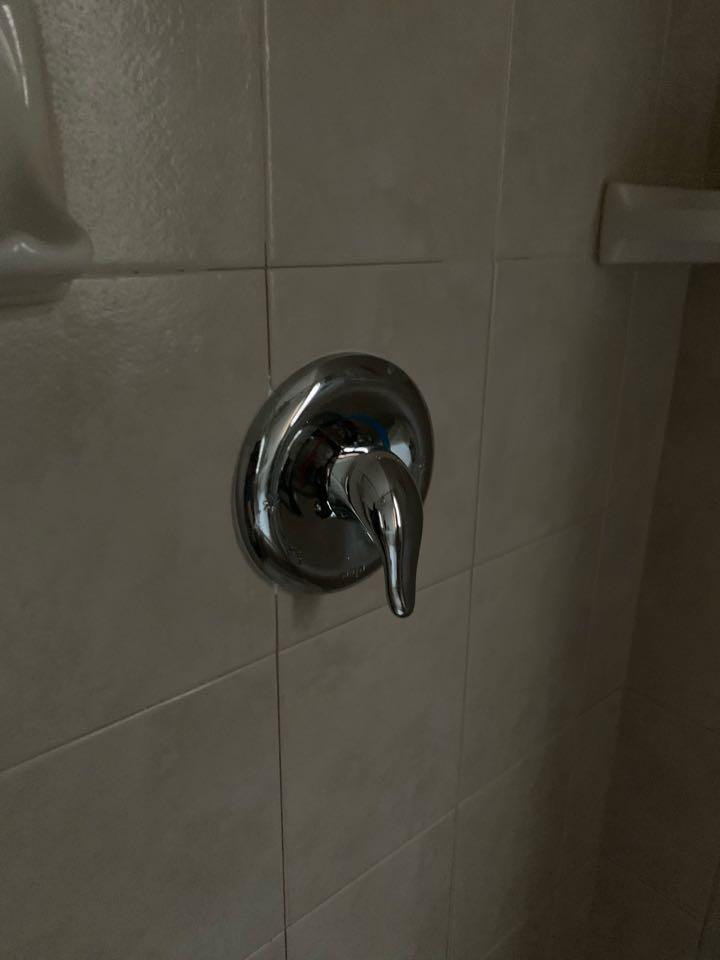 Replaced shower trim