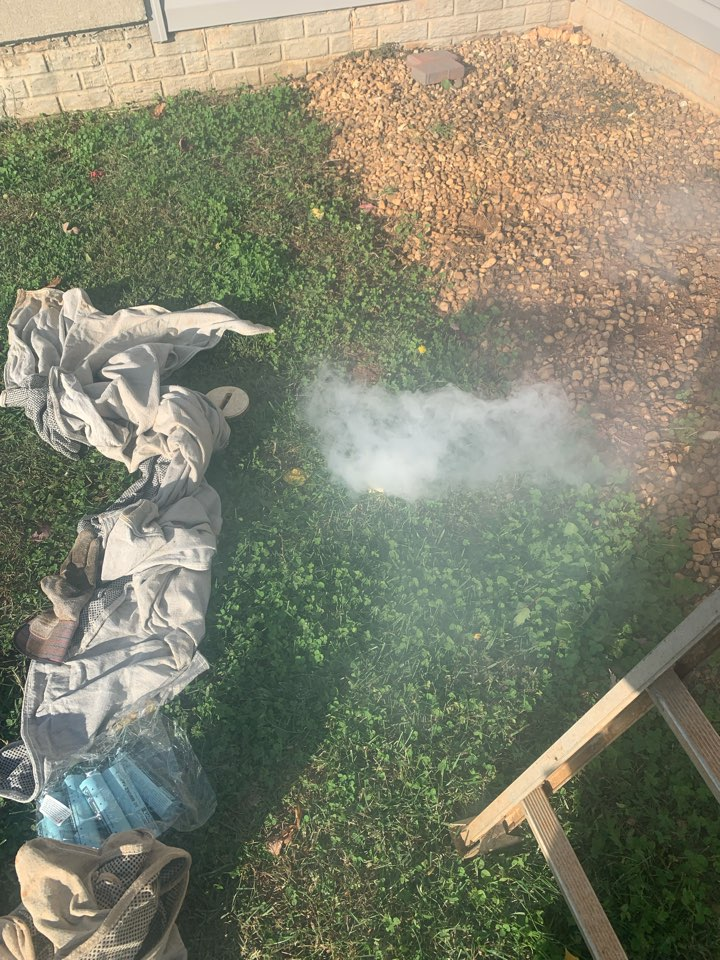Locating sewer smell within home in Culpeper