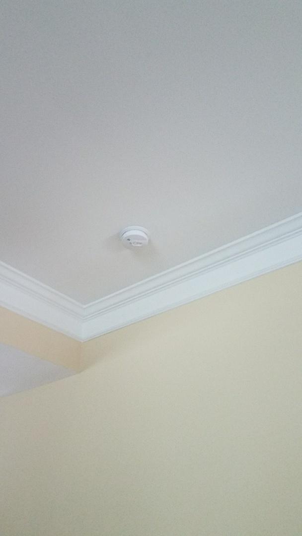 Mableton, GA - Replacing Smoke / Carbon Monoxide Detectors