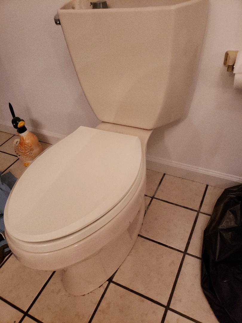 Kingsport, TN - Customer has a leaking toilet when the toilet is flushed. We pulled the toilet and replaced the wax seal to stop the leak.