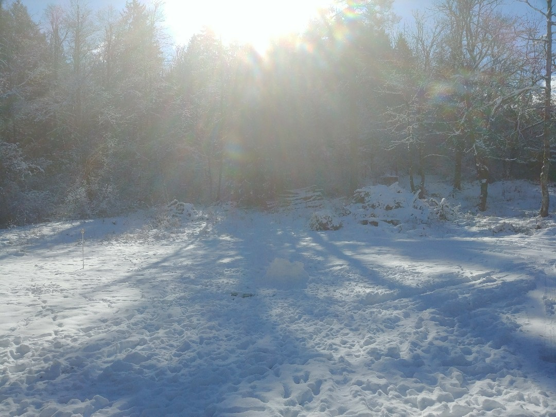 Working out in Tenino winter wonderland style