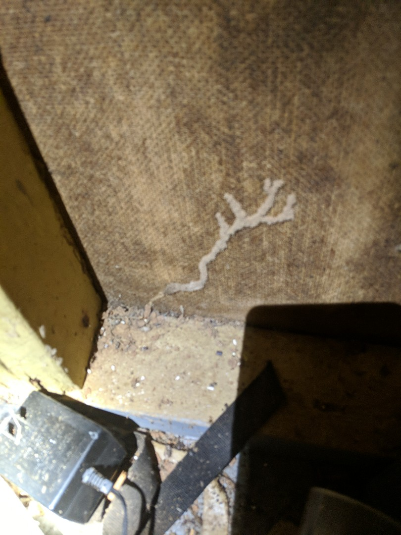 Termites are on the job 24/7 so is Absolute Termite and Pest Control!  Termite Treatment in Prattville, AL