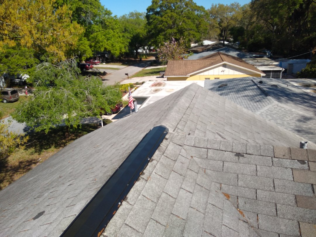 Tampa, FL - Carrollwood homes are generally well taken care of but, as these houses age, make sure the roof is not forgotten!