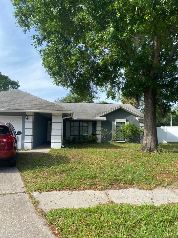 Tampa, FL - Full roof replacement in Tampa looking for new architectural shingles