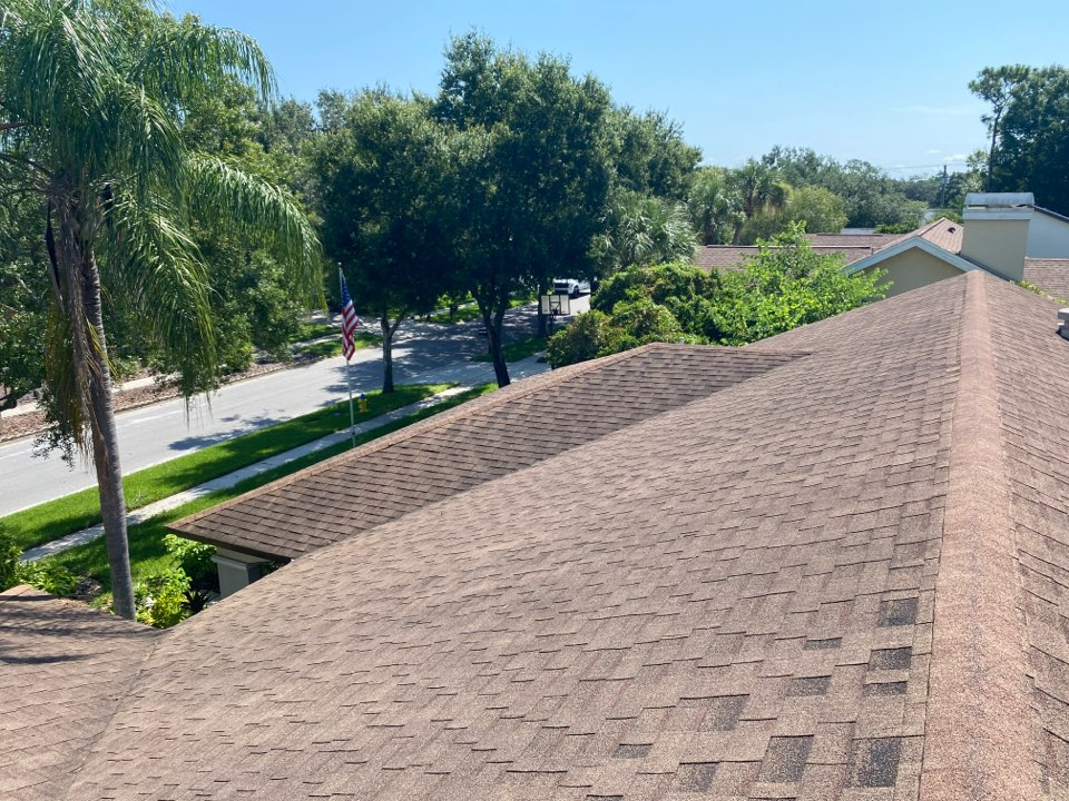 Tampa, FL - Estimate for a full shingle roof replacement in Carrollwood Tampa Florida. Looking for a complete re-roof with new architectural shingles
