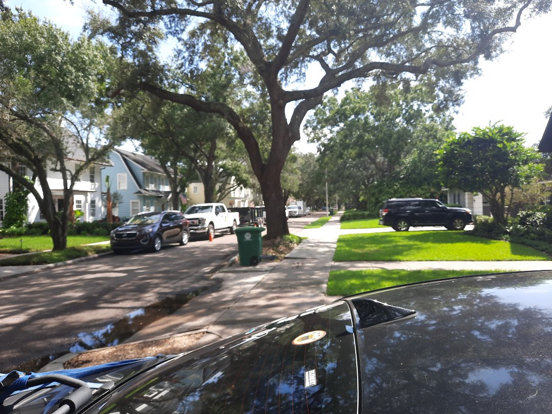 Tampa, FL - Roof inspection, customer servic, flat roof