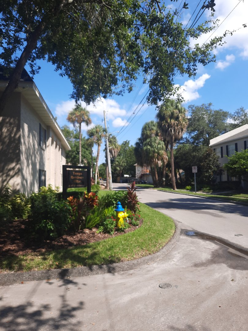 Tampa, FL - Roof Inspection, customer service,