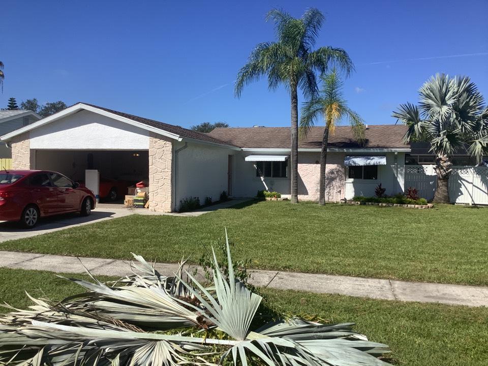 Seminole, FL - Shingles