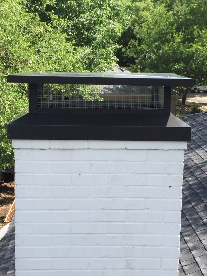 Dallas, TX - Birds in chimney and chimney cap install