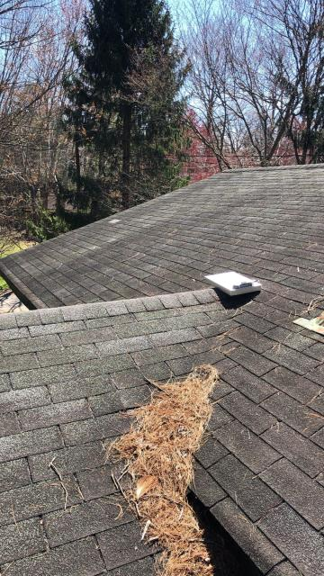 Asheville, NC - Reviewing a roof in East Asheville today. Be sure to clean the debris off your roof before it creates a leak.