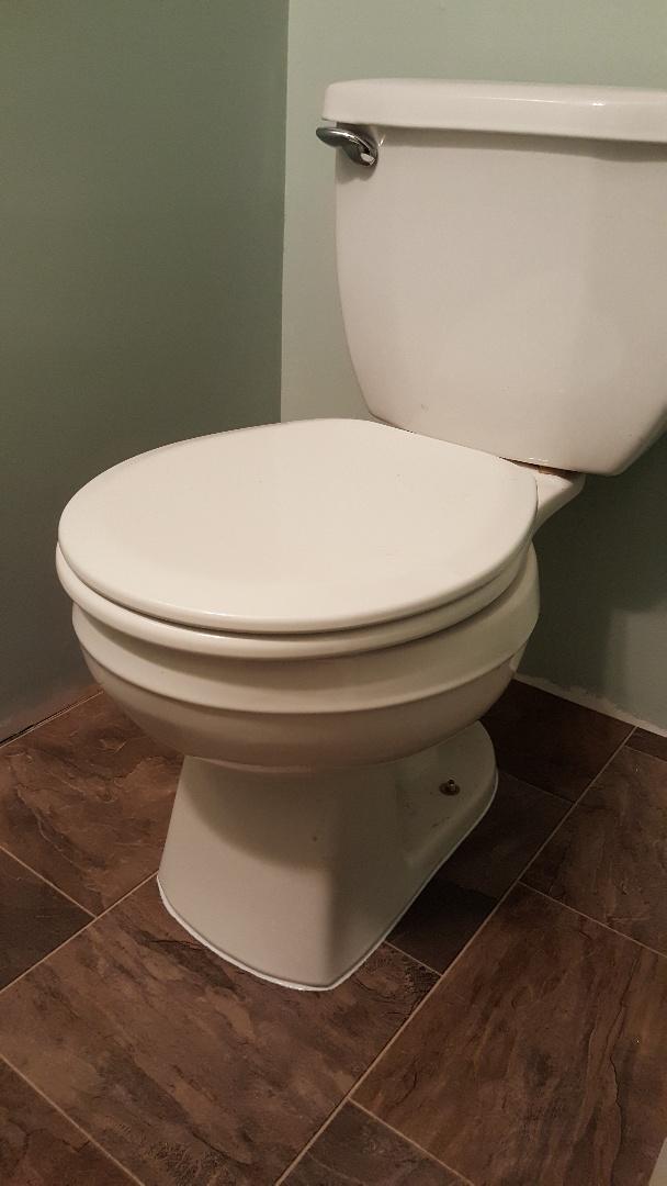 Reinstall toilet in Murray