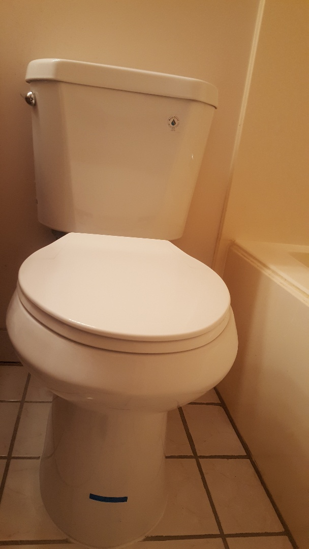 Millcreek, UT - Replace a toilet in Murray, Utah.