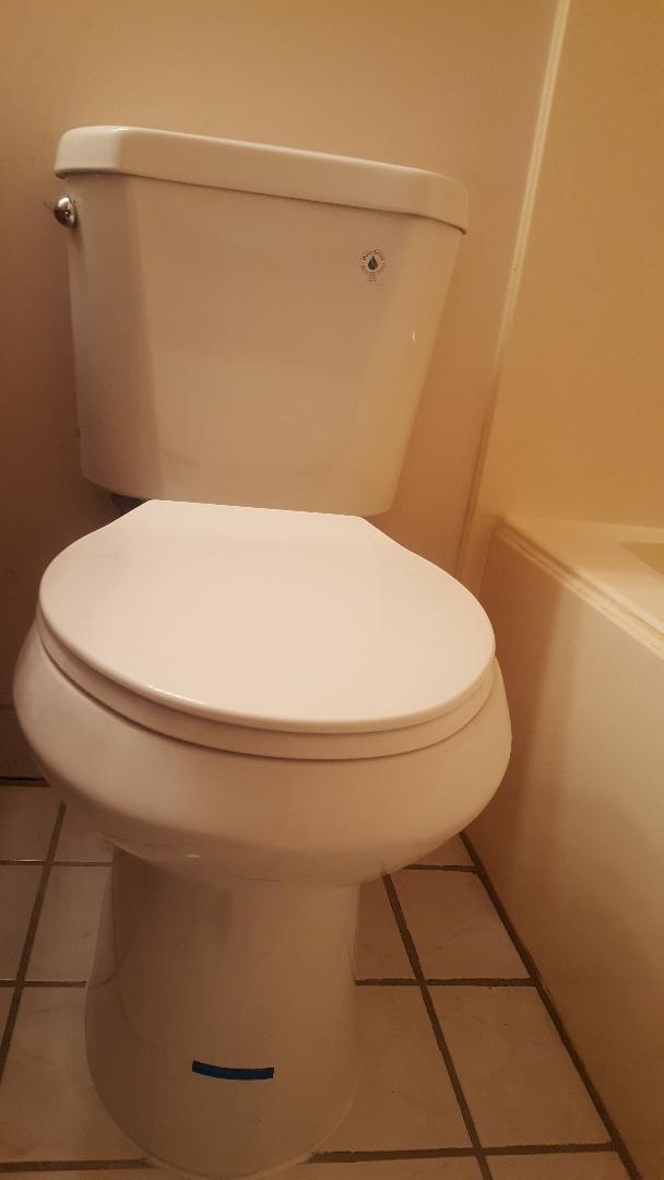 Replace a toilet in Murray, Utah.