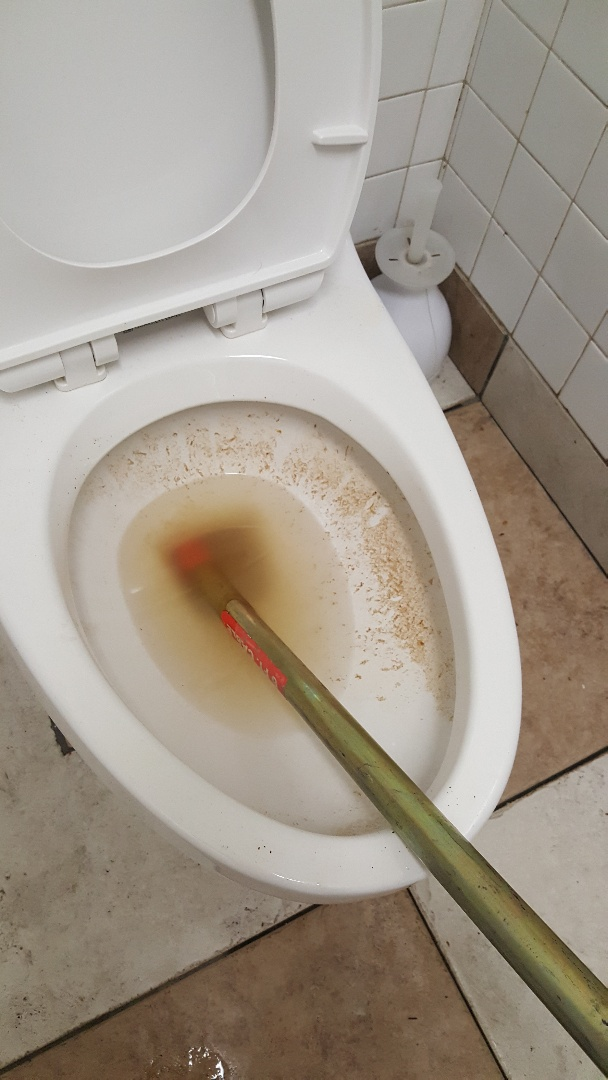 Clogged toilet in South salt lake city