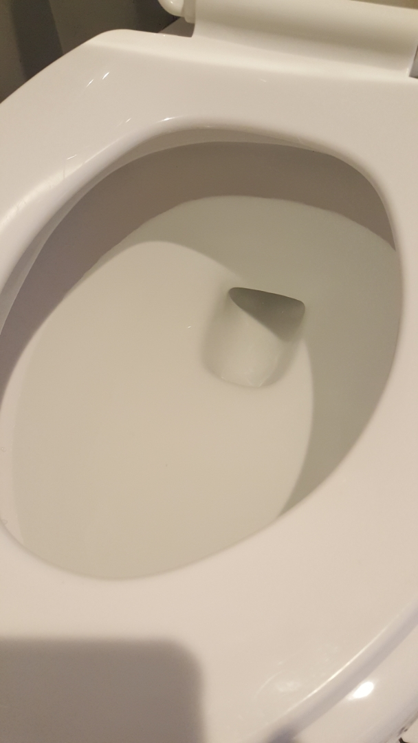 Salt Lake City, UT - Clogged toilet in Taylorsville