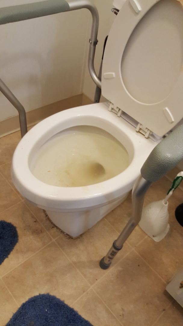 West Valley City, UT - Clogged toilet in west valley