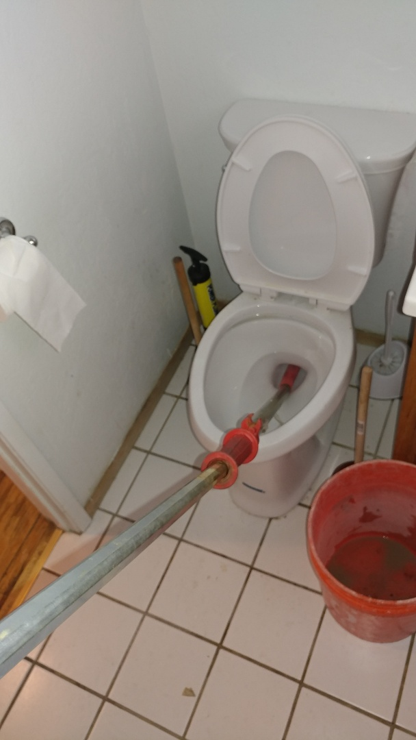Vallejo, CA - Unclogged a toilet using a commercial auger.