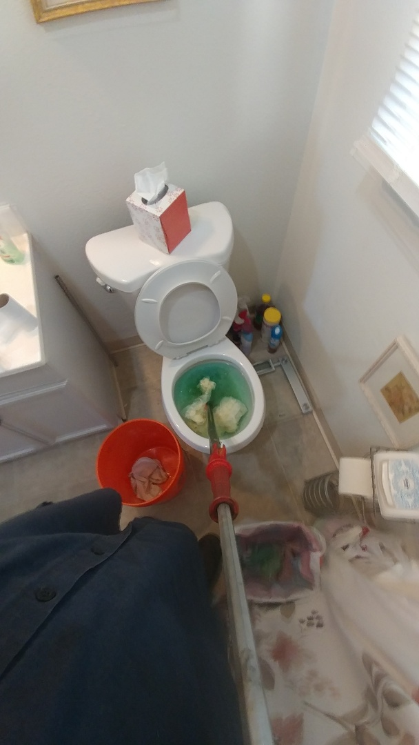 Unclogged toilet with commercial.