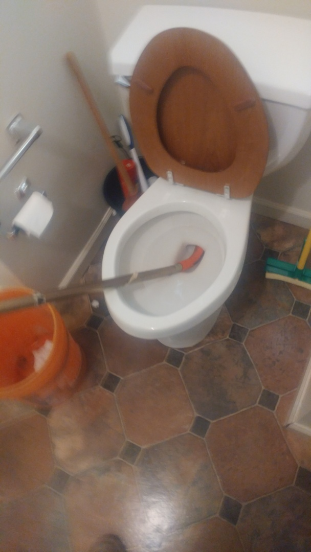 Just unclogged a toilet using a commercial auger.