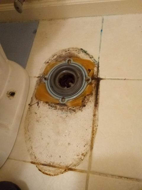 Woodstock, GA - Pull and reset toilet to seal properly, preventing sewer odors
