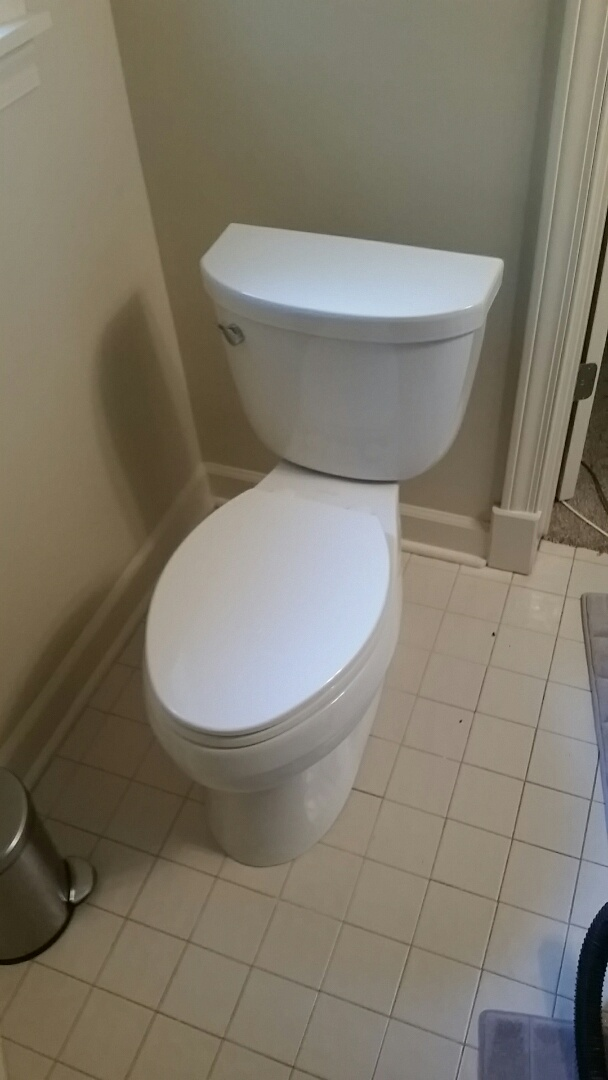 Sandy Springs, GA - Majestic supplied toilet
