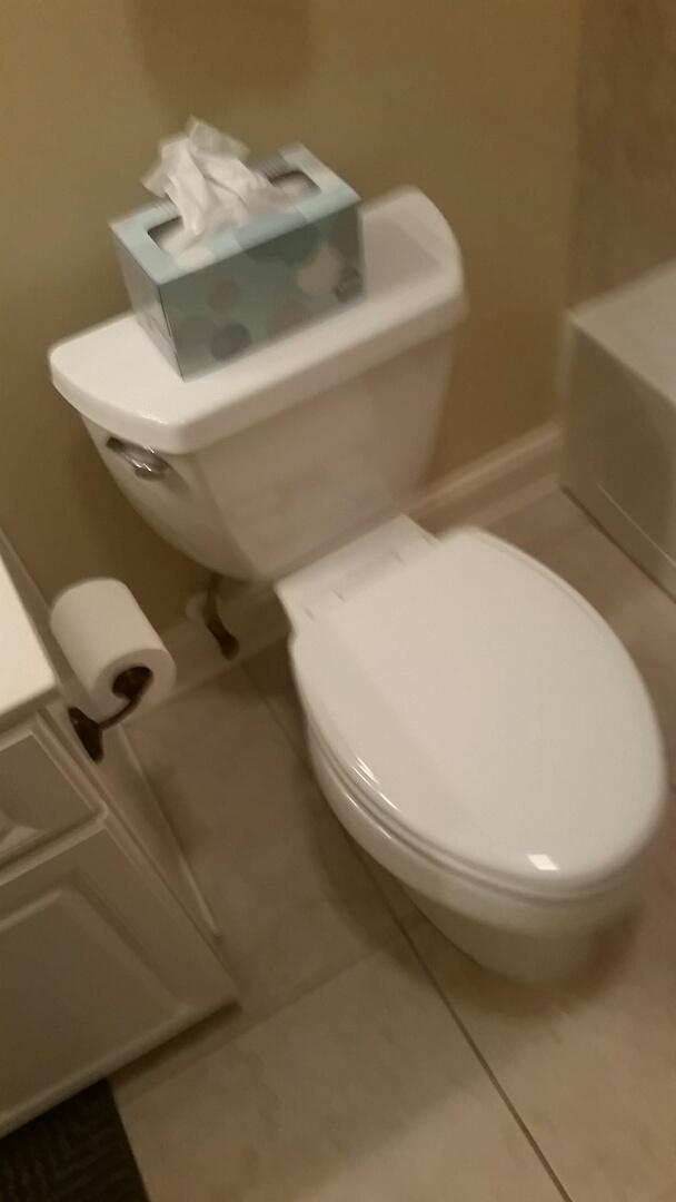 Acworth, GA - Toilet replacement customer supplied