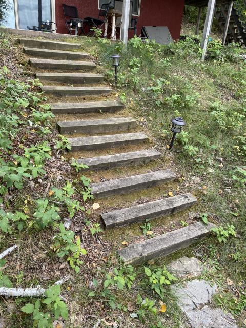 Nisswa, MN - Getting ready to create a 3D landscape design to replace these timber steps with new stone steps!