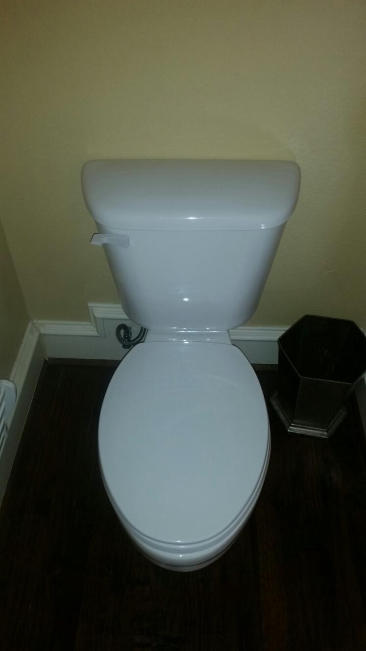 Reset toilet