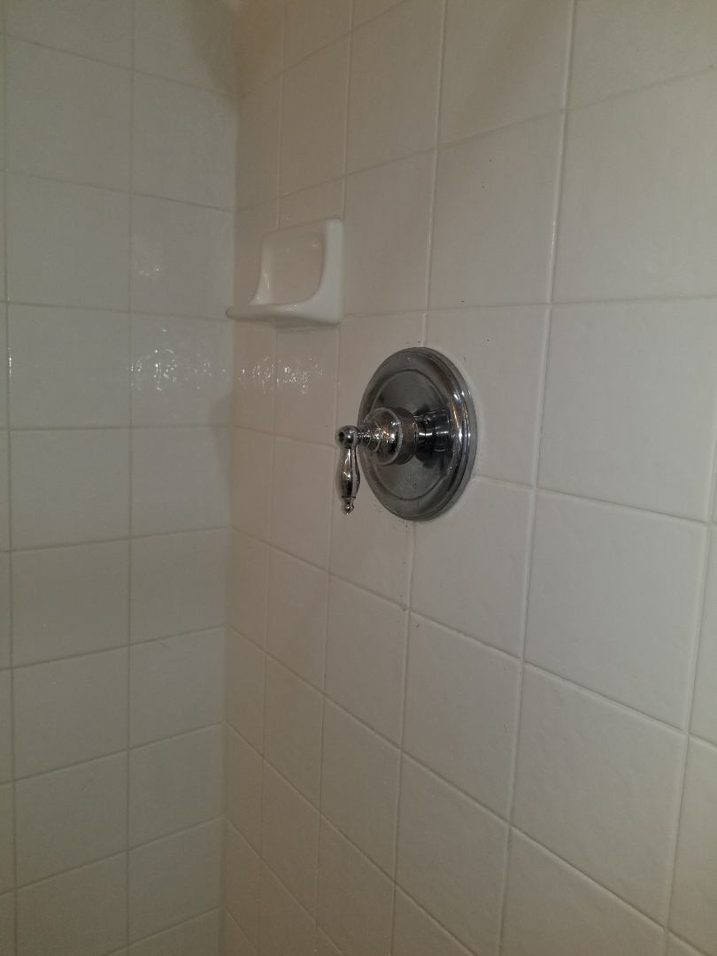 Master bath and shower not working properly. Need repair.  Install new moen posi temp. Allen plumbers.