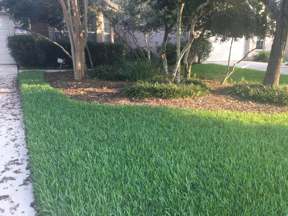 Conroe, TX - Snake service Respray front and back yard no snake found here today.