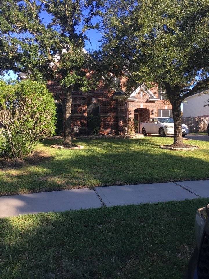 Cypress, TX - Removing squirrels from clients attic.