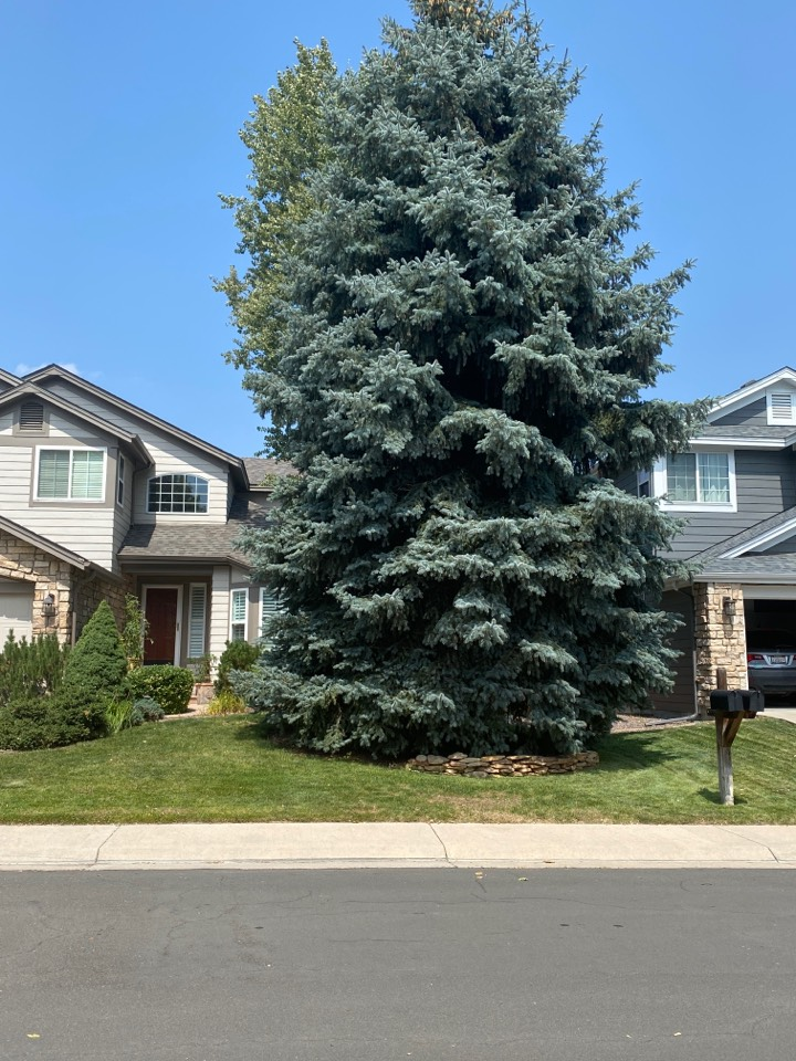 Broomfield, CO - Roof replacement needed due to hail storm